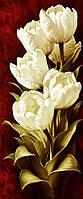 Алмазная вышивка мозаика Чарівний діамант Белые тюльпаны-3 КДИ-0629 25х60см 20цветов квадратные полная