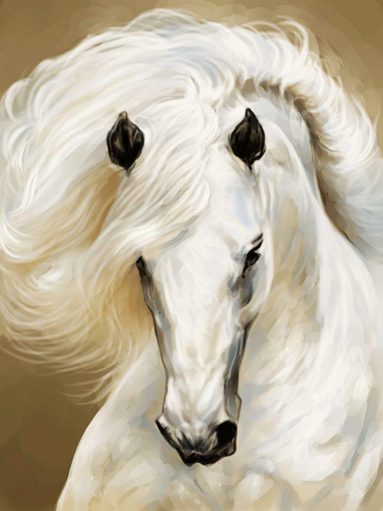 Алмазная вышивка мозаика Чарівний діамант Грация – Белая лошадь КДИ-0944 45х60см 23цветов квадратные полная