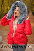 Женская зимняя куртка-пуховик красная, фото 1