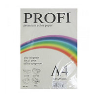 """Бумага для печати цветная """"Profi"""", набор 10 цветов по 25 листов, формат А4, Плотность 80г/м²."""