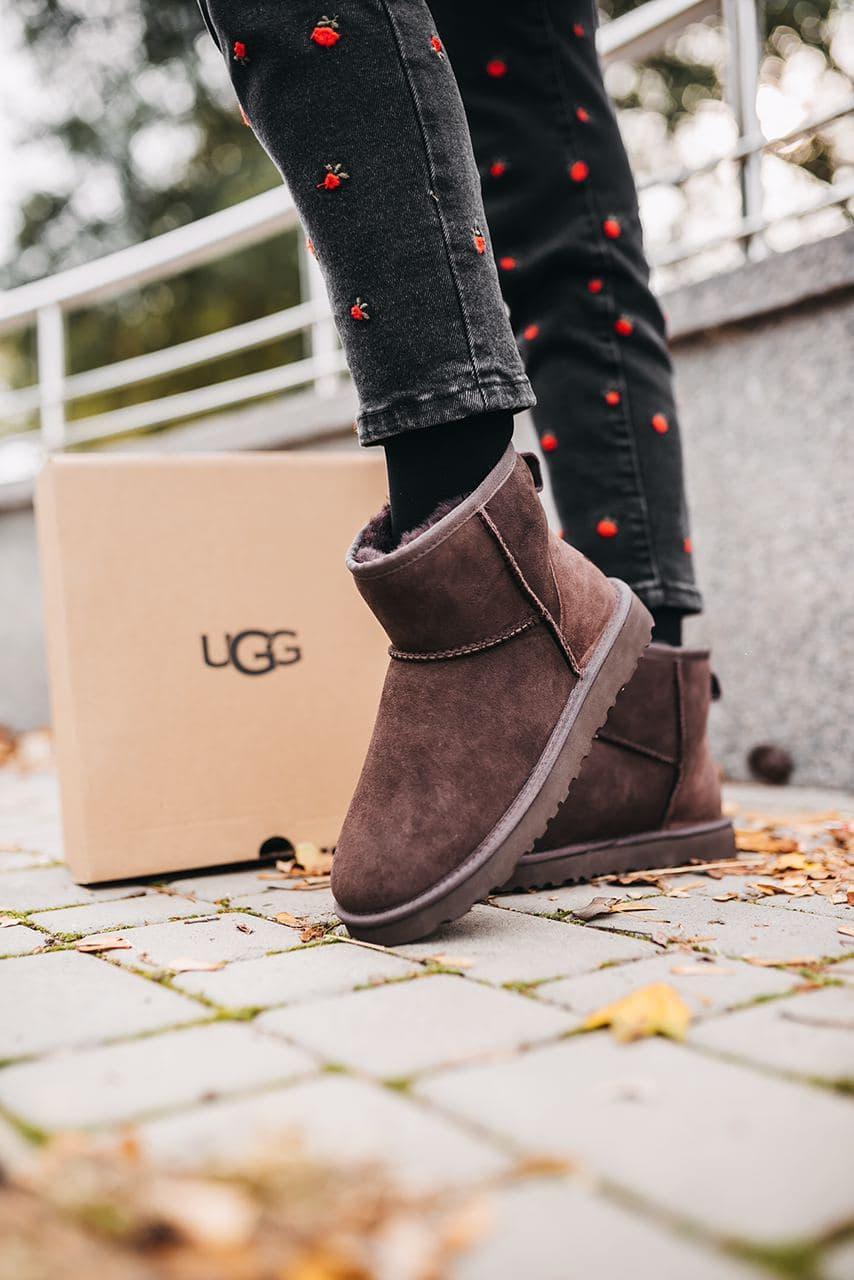 Женские зимние ботинки UGG Classic Mini Chocolate (мех)