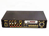 Усилитель звука Max AV-102BT Bluetooth USB + КАРАОКЕ 2микрофона, фото 2