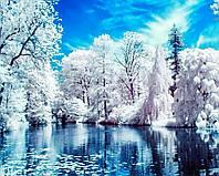 Алмазная вышивка мозаика Чарівний діамант Зимнее озеро КДИ-0034 40х50см 18цветов квадратные полная, фото 1