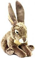 Плюшевый заяц National Geographic
