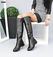 Жіночі демісезонні чоботи на низькому ходу 36-41 р чорний
