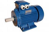 Электродвигатель 18,5кВт/1000об/мин(лапа,флянец)