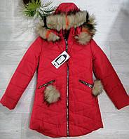 Куртки утепленные для девочек,  122 см,  № 142661
