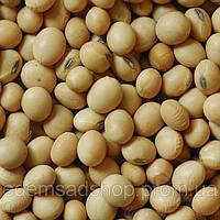 Соя (соевые бобы) 1 кг