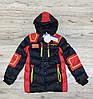 Зимняя куртка со съемным капюшоном ( Утеплитель-Холофайбер и мех). 10 лет.