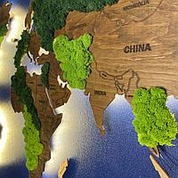 Карта Мира с подсветкой, гравировкой названий стран и границ, стабилизированный мох L-170x100 см