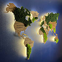 Карта Мира с подсветкой, гравировкой названий стран и границ, стабилизированный мох ХL-200x120 см