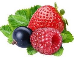 Ароматизатор харчовий Лісова ягода інкапсульований (Ароматизатор пищевой Лесная ягода инкапсулированный)