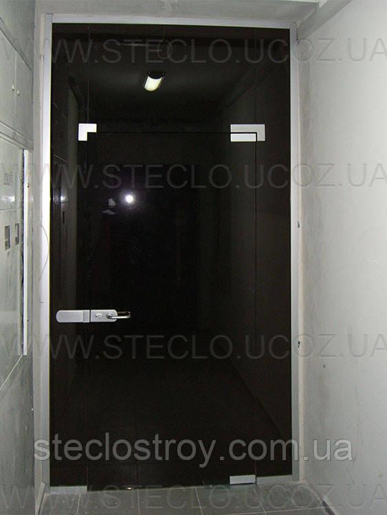 Входные стеклянные двери (группы)