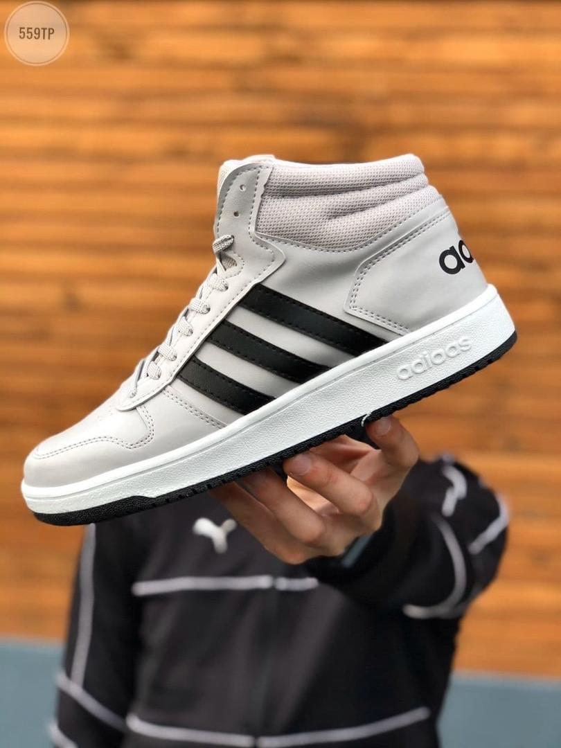 Чоловічі кросівки Adidas Gray (сірі) 559TP