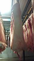 Свинина 1 кат. в полутушах в шкуре