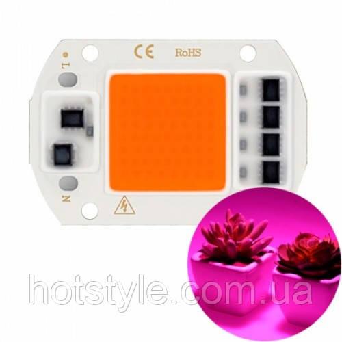 Светодиодная фито матрица с драйвером COB LED 50Вт 220В фитосветодиод, 103689