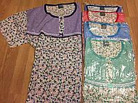 """Ночные рубашки, ночнушка """"Цветочки"""" 50-56 хлопок"""
