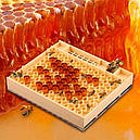 Система для вывода пчелиных маток Никот Nicot 110 ячеек, 103800, фото 4