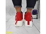 Кроссовки деми на высокой платформе красные 36, 37, 38, 41 (2349), фото 5