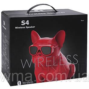 DOG S4 Bluetooth Speaker — MultiColor