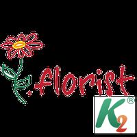 Регистрация домена florist