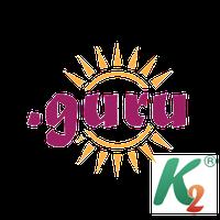 Регистрация домена guru