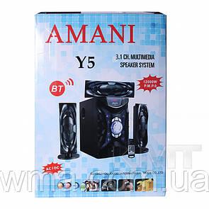 Акустическая система 3.1 Multimedia Speaker System AMANI Y5