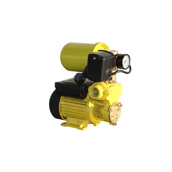 Станция повышения давления MAXIMA WZ-250-2L 0.25 кВт с баком 2л эмаль