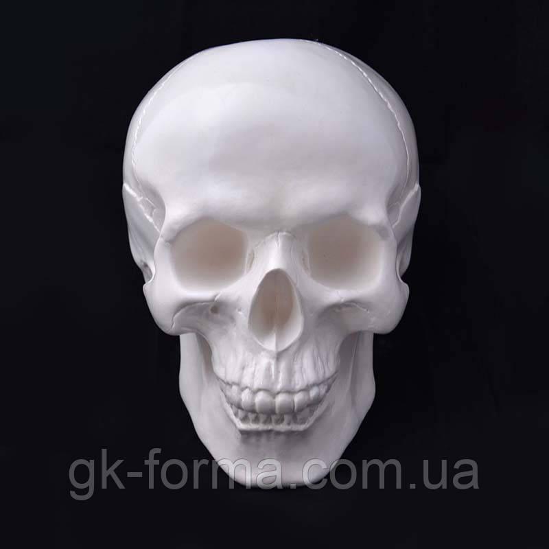Череп человека декоративный в натуральную величину белый из гипса