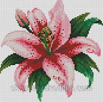Алмазна вишивка DM-015 Розова лілія (Алмазная мозаика)