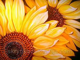 Алмазна вишивка DM-113 Квітучі соняхи (Алмазная мозаика)