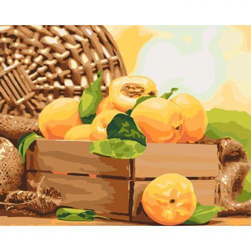 """Картина по номерам """"Золотистый абрикос"""" ★★★ КНО5565"""