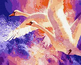 Картина за Номерами Лебеді в небі 40х50см RainbowArt