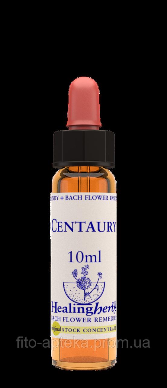 Цветы Баха.CENTAURY - Золототысячник (№ 4) Healing Herbs