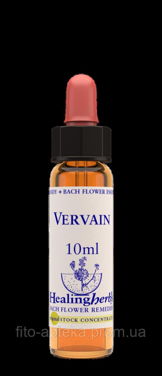 Цветы Баха. VERVAIN - Вербена (№ 31) Healing Herbs