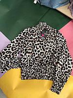 Кофта укороченная велюровая Хит сезона норма 42-46 рр,принт леопард