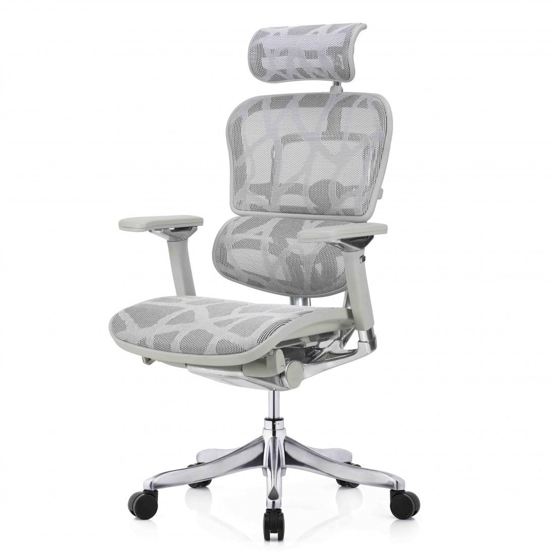 Кресло компьютерное с подголовником Enrandnepr ERGOHUMAN PLUS LUXURY