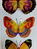 Наклейки бабочки объемные, цена за 1 планшетку( 4 бабочки), фото 3