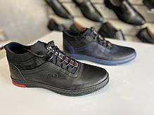 Мужские демисезонные кроссовки Polbut 🇵🇱🔥 размеры 38,39,40,41,42,43,44-45, фото 3