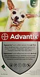 Bayer Advantix (Адвантикс) для собак до 4 кг за 1 пипетку, фото 2