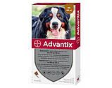 Bayer Advantix (Адвантикс) для собак 40-60 кг за 1 пипетку, фото 2