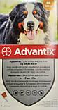 Bayer Advantix (Адвантикс) для собак 40-60 кг за 1 пипетку, фото 3