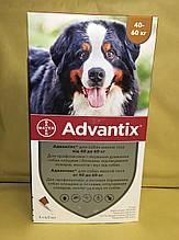 Bayer Advantix (Адвантикс) для собак 40-60 кг за 1 пипетку