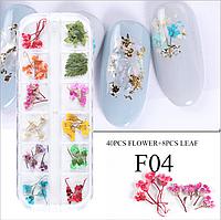 Сухоцветы для дизайна ногтей 04