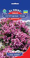 Тимьян ползучий Богородская Трава многолетний засухоустойчивый с приятным ароматом, упаковка 0,1 г