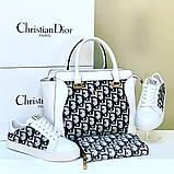 Набор: сумка, обувь, кошелек, фото 2