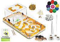"""Комплект Муравьиная Ферма Smart """"Сахара"""" + колония муравьев, корм, аксессуары и декор (18х10х7 см)"""