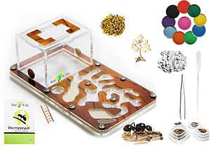 "Комплект Муравьиная Ферма Smart ""Дерево"" + колония муравьев, корм, аксессуары и декор (18х10х7 см)"