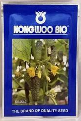 АРКТИКА F1 / АРЕНА F1 насіння огірка, 500 насінин — партенокарпічний, ранній (36-40 днів) NongWoo Bio