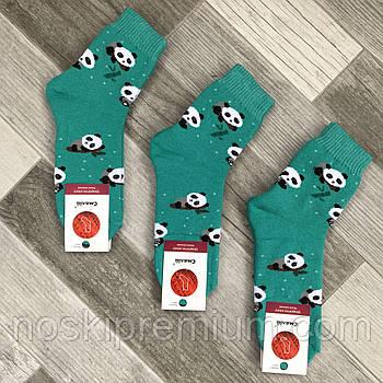 Шкарпетки жіночі махрові х/б Смалій, 23-25 розмір, малюнок 183 бірюзові, 036051